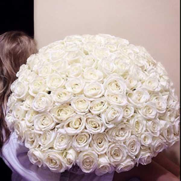 101 белая роза в форме купола
