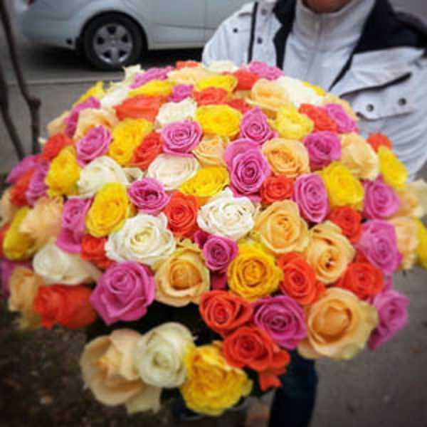101 роза микс из 4 сортов роз