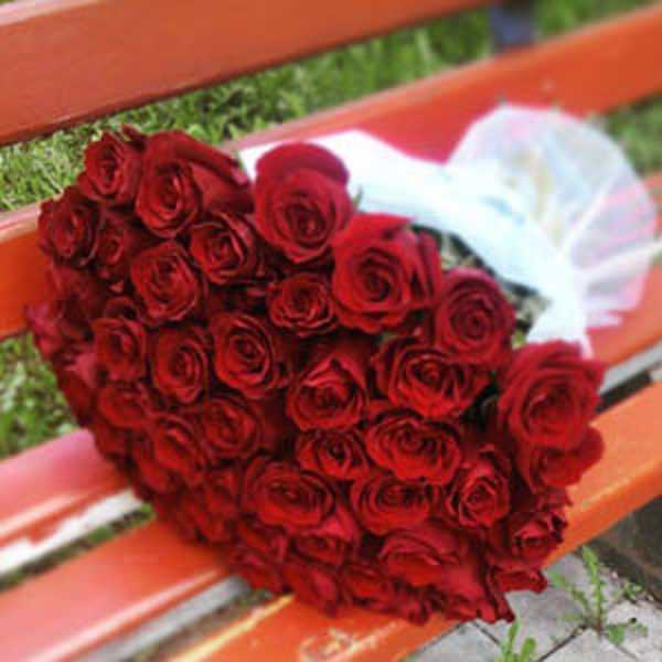 51 красная роза в белом фетре