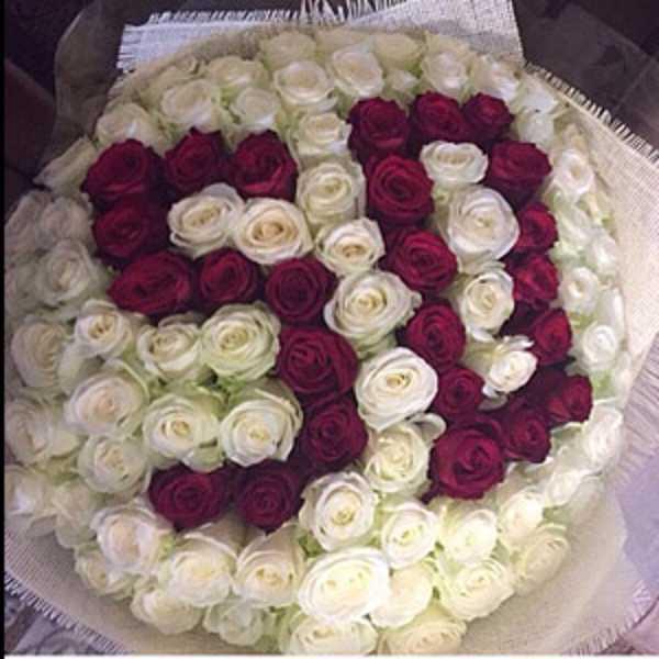 101 роза белая с красным числом 50