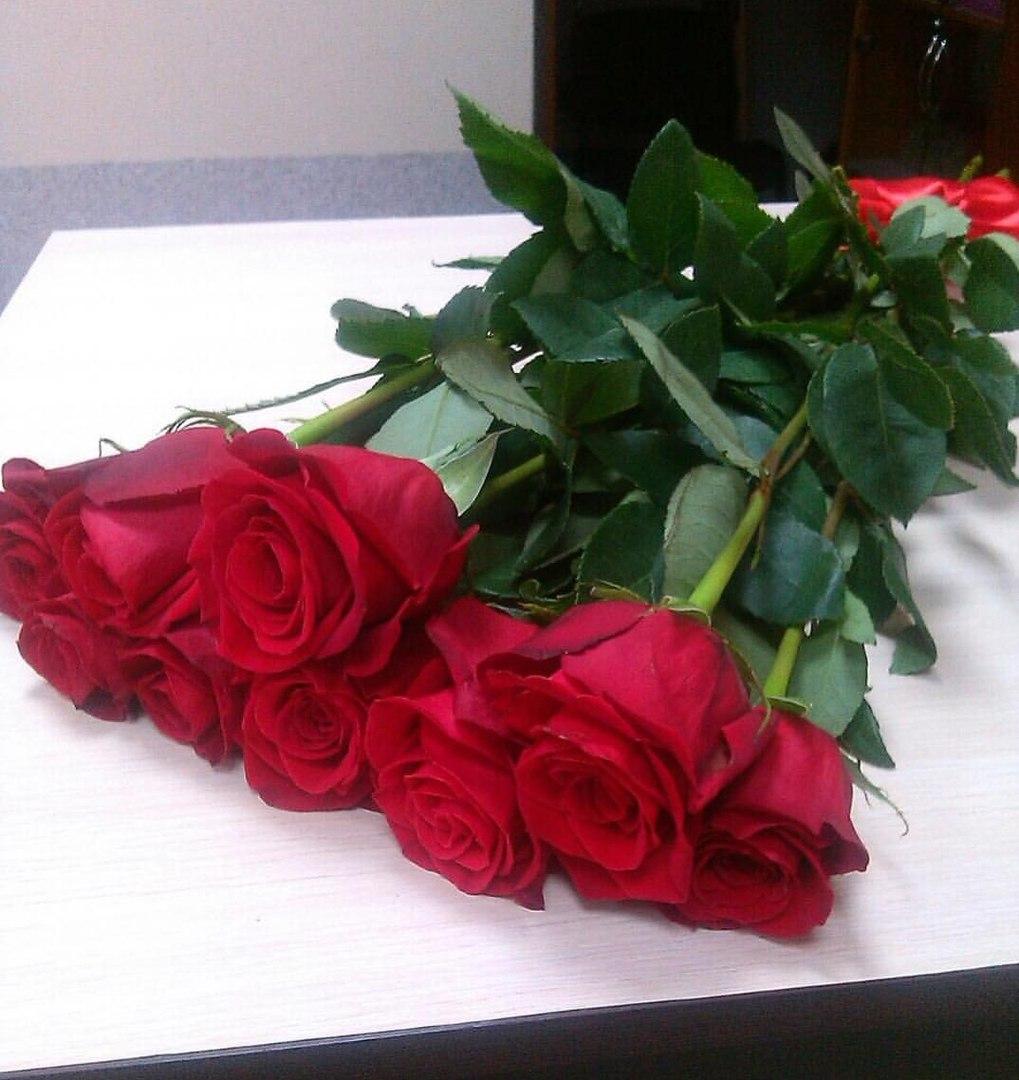 9 импортных красных роз с лентой атласной