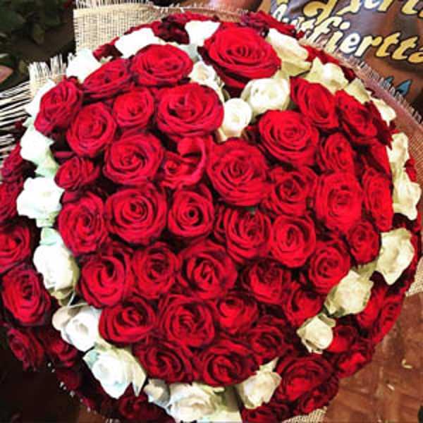 101 роза красное сердце с белым ободком