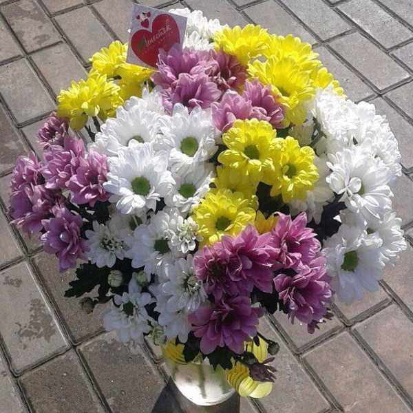 Букет из 11 хризантем трех цветов
