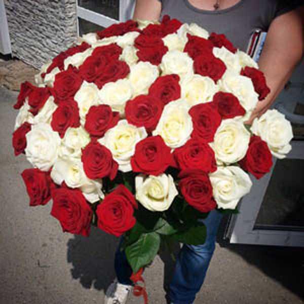65 роз вперемешку Ред Наоми и аваланш 60 см