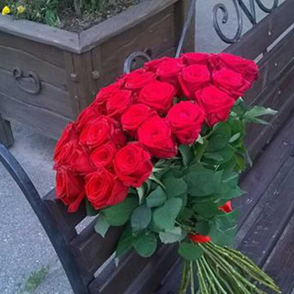 31 красная роза