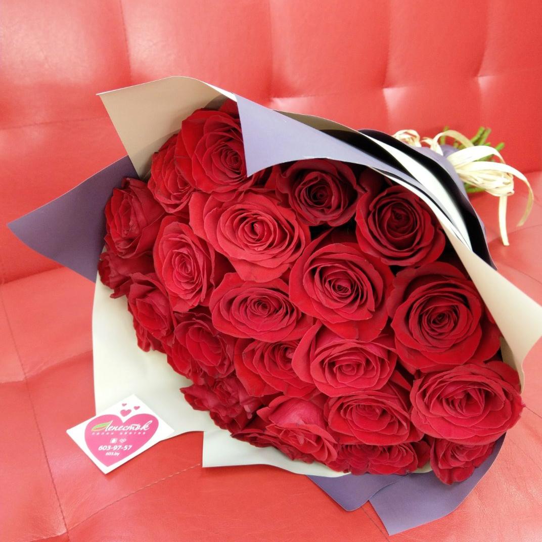 Классика. 25 шикарных роз