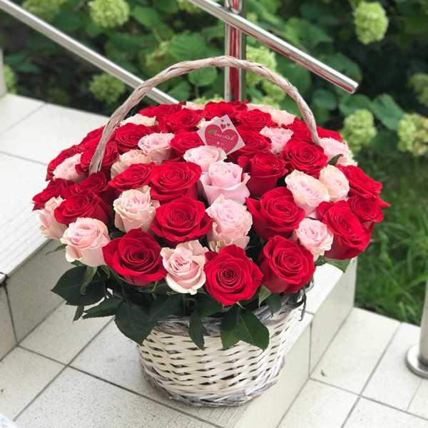 Корзина из 55 импортных роз