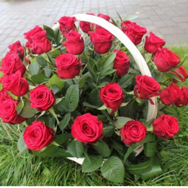 Корзинка из 51 розы красного цвета