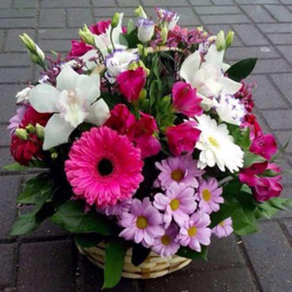 Корзина из гербер, орхидей, зелени и хризантем