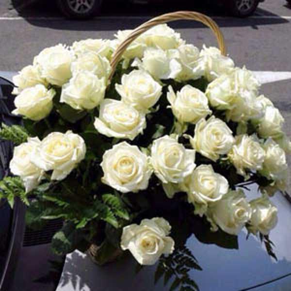 51 белая роза в корзине с зеленью