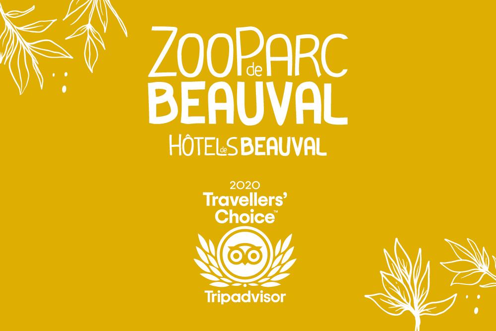 Trois Hôtels de Beauval dans le top 10 Tripadvisor !