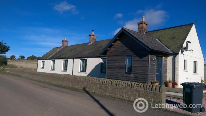 Property to rent in Bolshan Cottage Near Friockheim, Arbroath