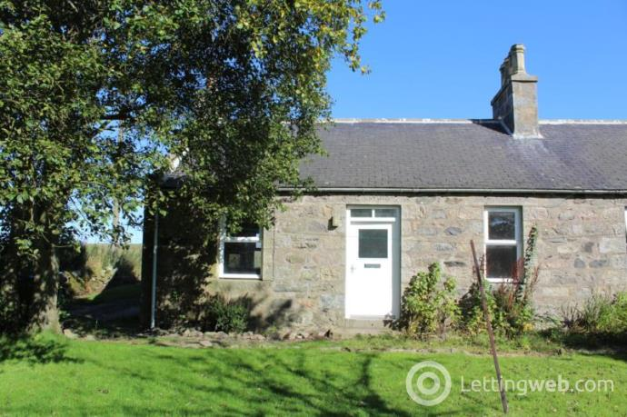 Property to rent in Hillhead Of Fechil, ELLON, AB41