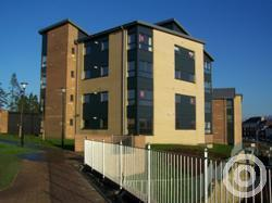 Property to rent in Mount Pleasant Way