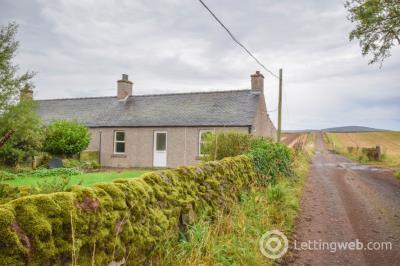 Property to rent in Broom Farm, Tannadice, Angus, DD8 3SJ