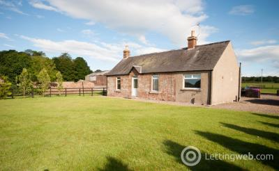 Property to rent in Easter Braikie, Arbroath, Angus, DD11 4RY