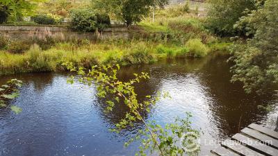 Property to rent in Wilderhaugh, Galashiels