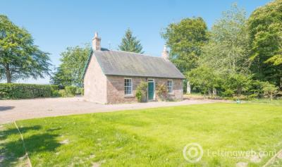 Property to rent in Craigo, Montrose