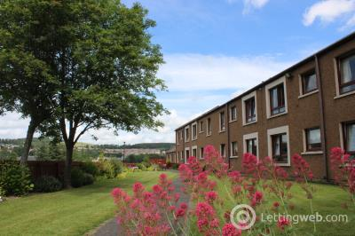 Property to rent in Douglas Haig Court