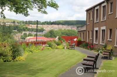 Property to rent in Douglas Haig Court, Hawick