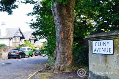 Property to rent in Cluny Avenue, Morningside, Edinburgh, EH10 4RG