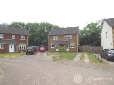 Property to rent in Birdsfield Street, Hamilton