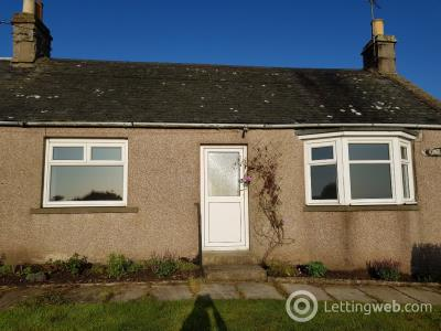 Property to rent in Kinneff, Montrose, Angus, DD10 0SZ