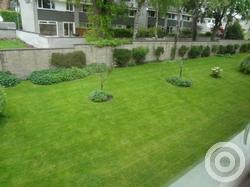 Property to rent in Belhaven Place