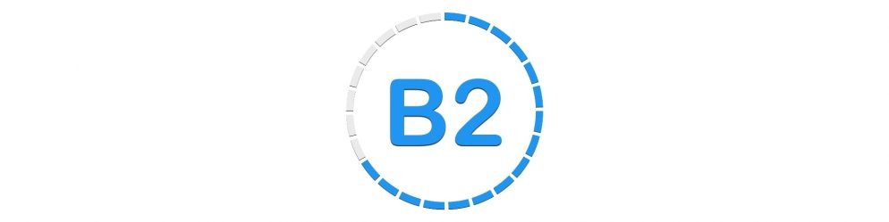 B2 WIDE