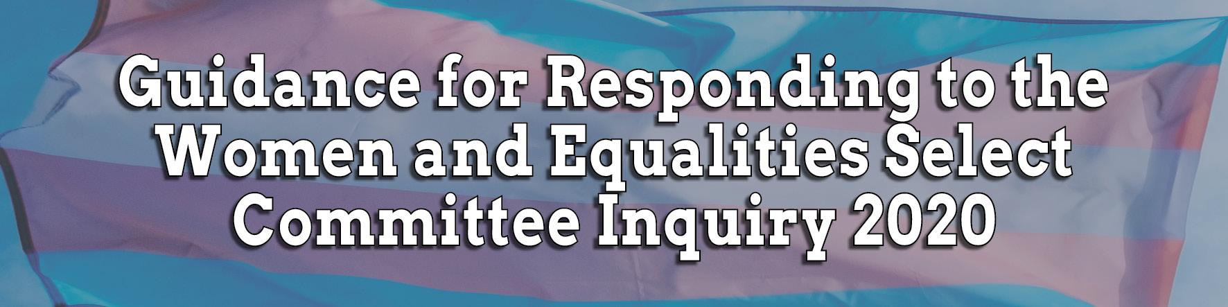 Guidance for Responding to the Women and Equalities Select Committee Inquiry 2020
