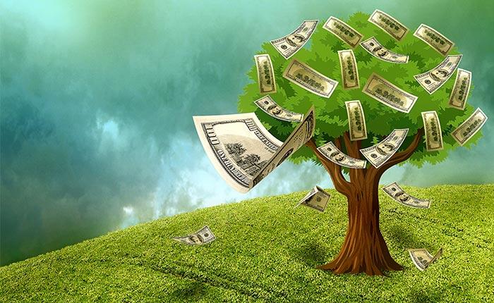 Data mining money tree