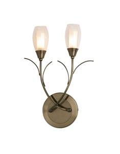 Iris Wall Light Fitting - Antique Brass | Multi Light Wall Fitting