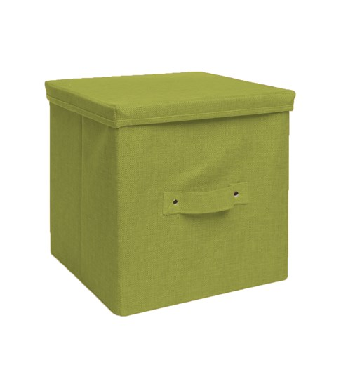 Storage Box - Apple Green