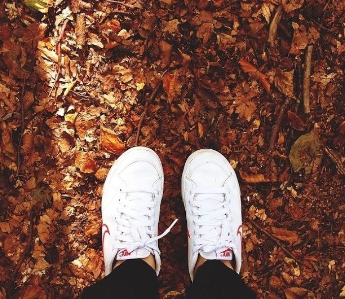 Autumn_190923_152808.jpg