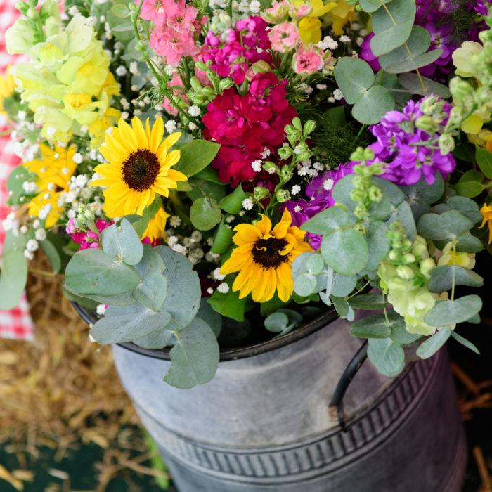 Sunflowers-in-churn.jpg