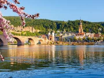 Festive Season on the Romantic Rhine