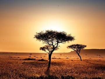 Grand Safari Kenya