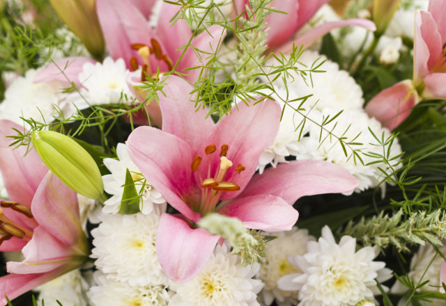 Closeup  Background From Different Flowers  Pink Lilies And White Chrysanthemums Smaller