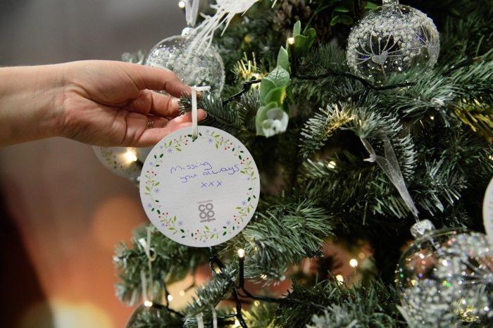Memorial-Christmas-trees.jpg