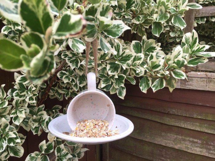 Teacup-bird-feeder.jpg