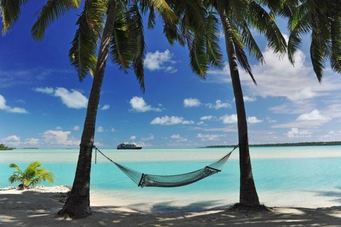Palm-trees-cruise-ship-hammock.jpg