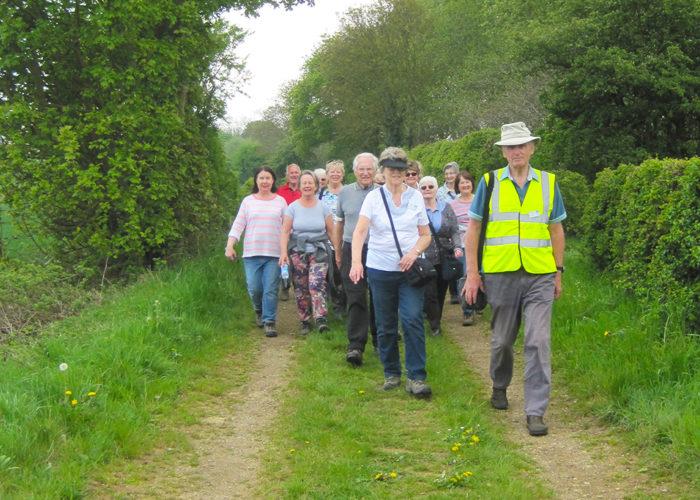 Health Walks Website 5