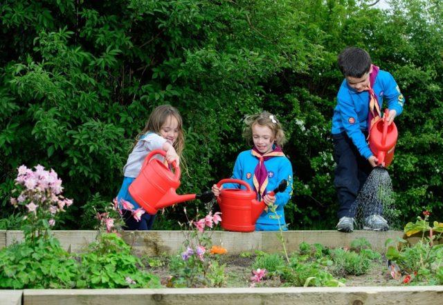 Inspiring children to love nature