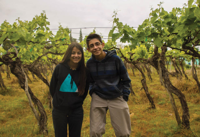 Cheers to Fairtrade wine producers