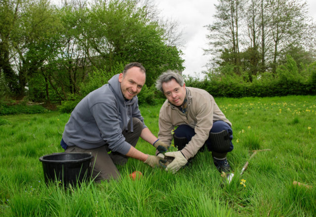 A helping hand for green spaces