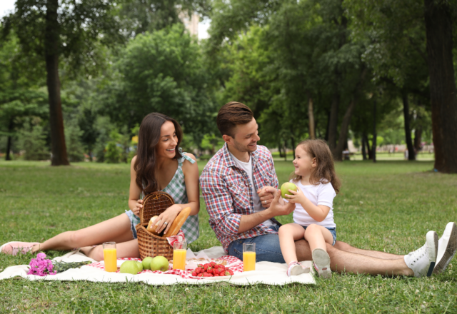 Five sandwich substitutes for the perfect picnic