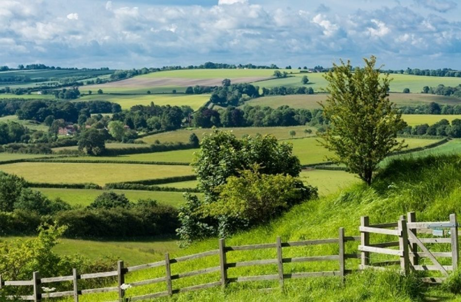 Lincolnshire Wolds Small