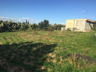 Land for Sale in Ouardanine 1706174