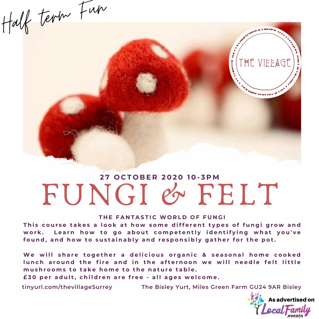 Mushrooms: Fungi & Felt