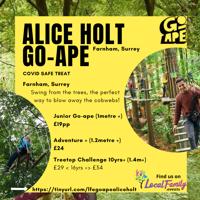 Tree Top Adventure GO APE for those over 1metre- Farnham